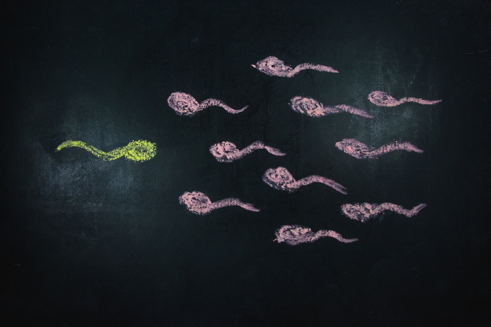 Top 10 Mistakes When Using A Sperm Donor